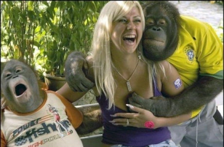http://24yes.com/gag/Blonde with 2 crazy monkies